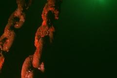 Wreck-Diving-1